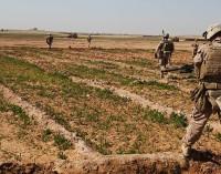 Farce & Folly in Afghanistan