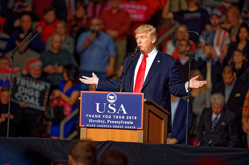 The Fabulously Insane World of Donald Trump